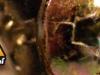 pared-1-tornillos-de-145-cms-alto-x-455